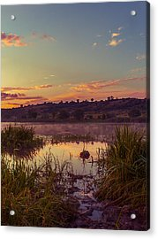 Evening On The Quiet River Acrylic Print