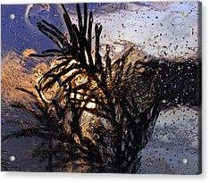 Evening Plant Acrylic Print