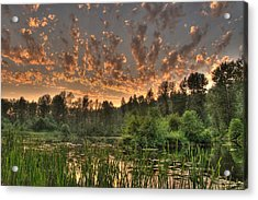 Evening Pond Acrylic Print by Jeff Cook