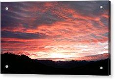 Evening Splendor  Acrylic Print by William McCoy