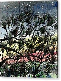 Evening Starlight Fantasy Acrylic Print