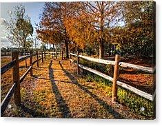 Evening Walk Acrylic Print by Debra and Dave Vanderlaan