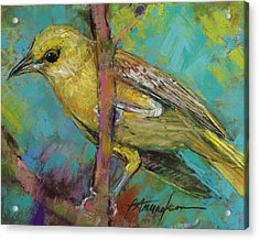 Ever Watchful Acrylic Print by Beverly Amundson
