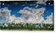 Reflected Everglades 0203 Acrylic Print