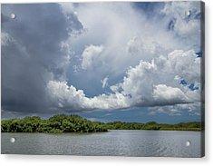 Everglades 0257 Acrylic Print
