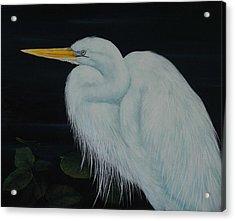 Everglades Angel Acrylic Print