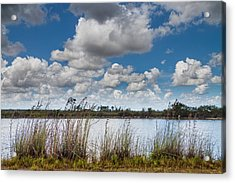 Everglades Lake 6853 Acrylic Print