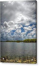 Everglades Lake 6919 Acrylic Print
