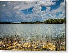 Everglades Lake 6930 Acrylic Print