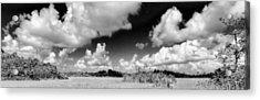 Everglades Panorama Acrylic Print by Rudy Umans