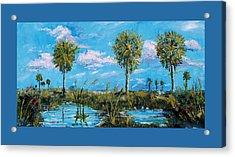 Everglades Sage Palms Acrylic Print