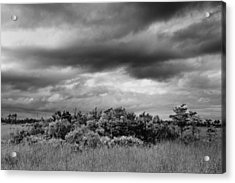 Everglades Storm Bw Acrylic Print by Rudy Umans