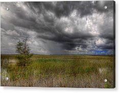 Everglades Storm Acrylic Print by Rudy Umans