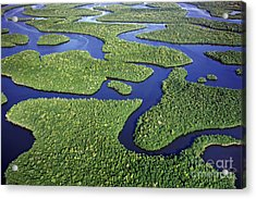 Everglades Waterways Acrylic Print