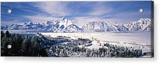 Evergreen Trees On A Snow Covered Acrylic Print by Panoramic Images