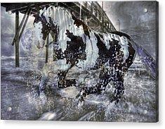 Everpresence  Acrylic Print by Betsy Knapp