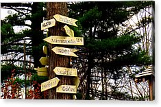 Every Which Way Acrylic Print by Stephen Melcher