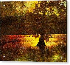 Evocative Waterscape Sunrise Acrylic Print by J Larry Walker