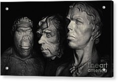 Acrylic Print featuring the pyrography Evolution by Evgeniy Lankin