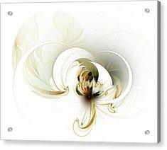Evolving Acrylic Print