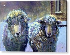 Ewe And Me 2 Acrylic Print