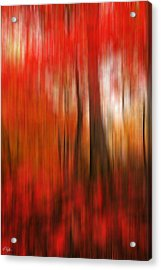 Existing Red Acrylic Print