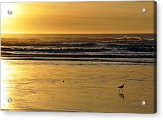 Acrylic Print featuring the photograph Exit Stage Right by AJ  Schibig