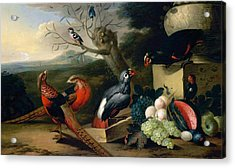 Acrylic Print featuring the digital art Exotic Birds by Tobias Stranover
