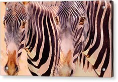 Exotic Friends Acrylic Print