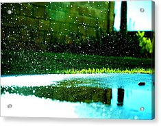 Expanded Impact Acrylic Print by Julie Shiroma