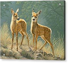 Explorers Acrylic Print by Paul Krapf