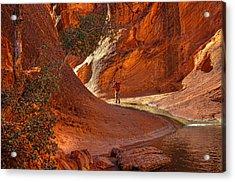 Exploring The Canyon Acrylic Print