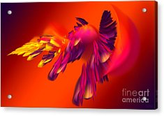 Explosion Of Hot Colors Acrylic Print