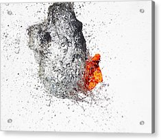 Explosive Water Balloon Acrylic Print by Jay Harrison
