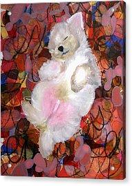 Exposed Acrylic Print by Sarah Wathen