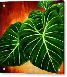 Exquisite Collection- Philodendron Gloriosum Acrylic Print by Lourry Legarde