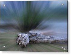 Extinction Rising Acrylic Print