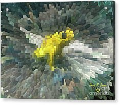 Acrylic Print featuring the photograph Extrude Yellow Frog by Donna Brown