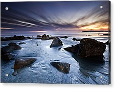 Acrylic Print featuring the photograph Exuberance by Ryan Weddle