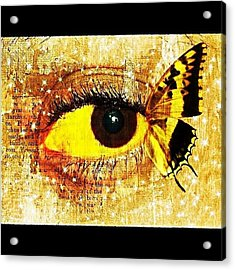 #eye #butterfly #brown #black #edit Acrylic Print