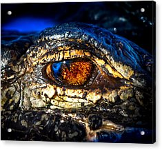 Eye Of The Apex Acrylic Print by Mark Andrew Thomas