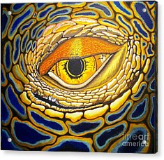Eye On You Acrylic Print by Barry Bridges
