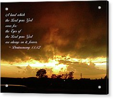 Acrylic Print featuring the photograph Eyes Of God by Robyn Stacey