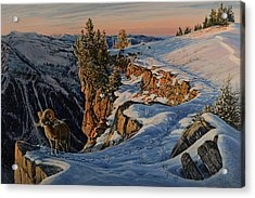 Acrylic Print featuring the painting Eyes Of The Canyon by Steve Spencer