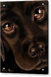 Eyes Acrylic Print by Veronica Minozzi