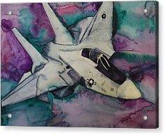 F14 Acrylic Print