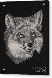 Fabulous Mr. Fox Acrylic Print