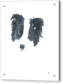 Acrylic Print featuring the digital art Face In The Snow by Aliceann Carlton