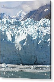 Face Of A Giant In Alaska Acrylic Print