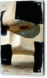 Acrylic Print featuring the painting Face On by Joan Reese